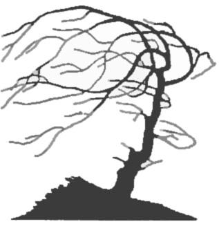 Рис. 17. При совпадении контуров двух объектов возникает эффект двойственных фигур. Однако на этом рисунке преимущественно воспринимается лицо человека. Почему?