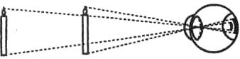 Константность восприятия. Из двух одинаковых по величине объектов более удаленный дает меньшее изображение на сетчатке глаза. Однако это не влияет на адекватную оценку их действительной величины. При этом мозг учитывает информацию об аккомодации хрусталика (чем ближе объект, тем более искривлена поверхность хрусталика), о конвергенции зрительных осей (схождении зрительных осей двух глаз) и о напряженности глазных мышц