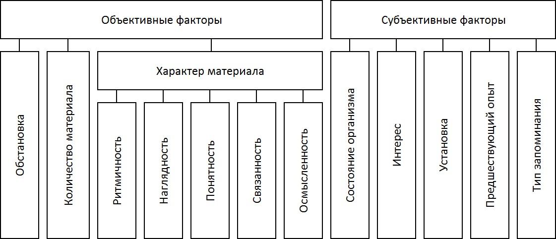 Объективные и субъективные факторы запоминаемого материала