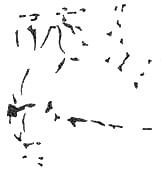 Эти разрозненные пятна объединяются в единый зрительный образ, если перевернув изображение на 180 градусов, вы поймете его смысл