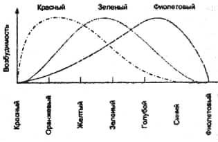 Рис. 56. Схема трехкомпонентной теории цветового зрения Гельмгольца.