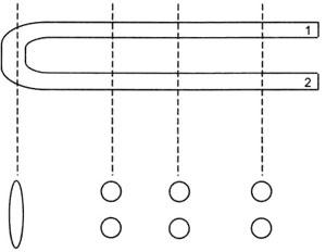 Схема стриатума