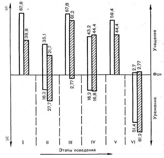 Рис. 19. Процентное соотношение нейронов зрительной области коры головного мозга, увеличивающих (столбики вверх) или уменьшающих (столбики вниз) активность на последовательных этапах целенаправленного поведенческого акта в случае применения светового (светлые столбики) условного раздражителя. I—VI — этапы поведенческого акта (объяснение в тексте).