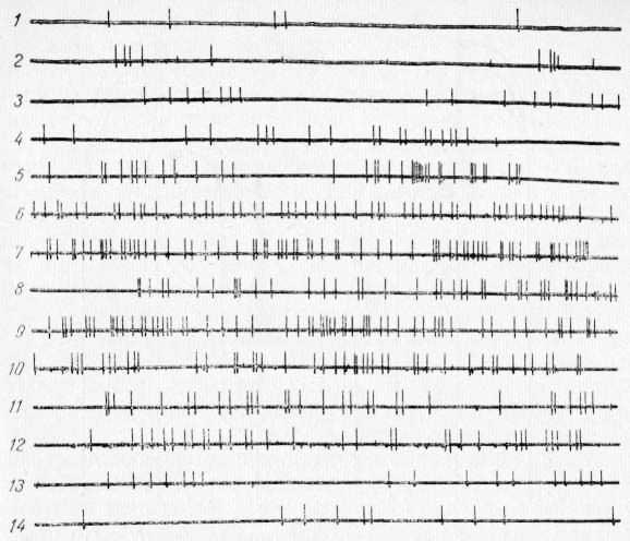 Изменение фоновой активности одиночного нейрона слоя V—VI коры в области CII при ее охлаждении