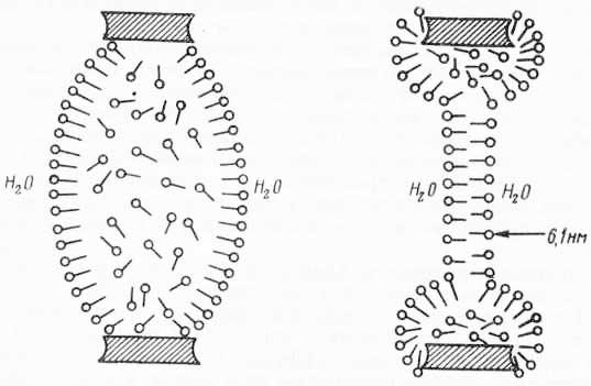Образование бимолекулярного слоя путем выталкивания воды из толстой пленки (по Томпсону и А. Поликару, 1972)