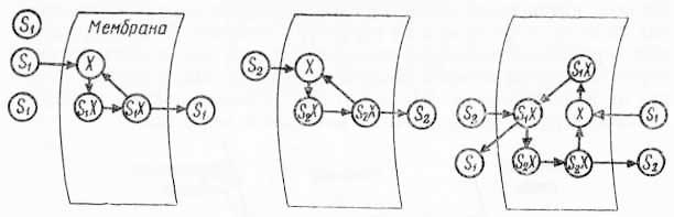 Перенос сахаров через мембрану (из Л. Лёви и Ф. Сикевица, 1971)