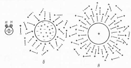 Гидратация и стабилизация (из А. Гизе, 1959)