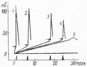 Влияние крутизны нарастания силы раздражения на возникновение потенциала действия и его величины (по Е. Б. Бабскому и др., 1972)